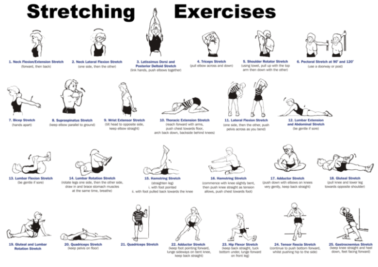 whole-body-stretching-routine